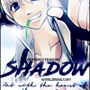 ADM Shadow